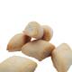 biscotti di mandorla senza zucchero